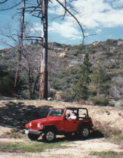 Little Red Jeep